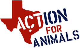 Action for Animals Austin