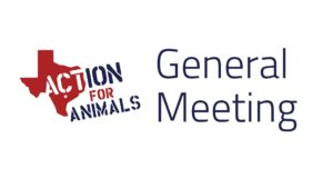 Action for Animals General Meeting @ Spider House Cafe and Ballroom | Austin | Texas | United States